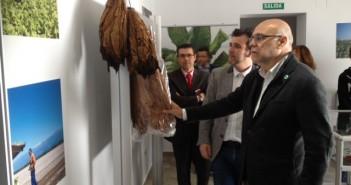 Museo Etnográfico y del Tabaco