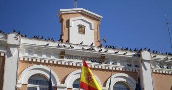 Las palomas ocupan la parte alta del Ayuntamiento moralo.