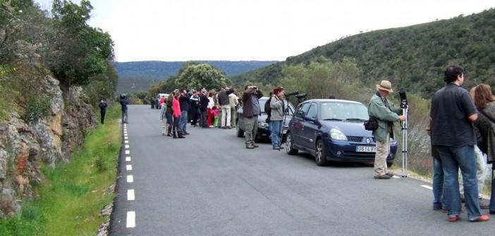 Turistas en Monfragüe