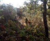Incendio forestal en Garganta la Olla
